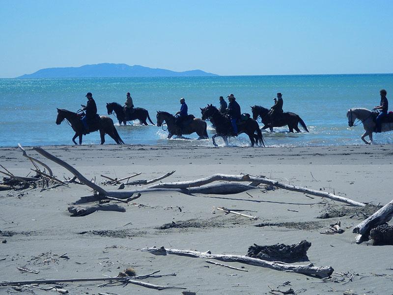 parco maremma-escursioni a cavallo agriturismo poggio al vento