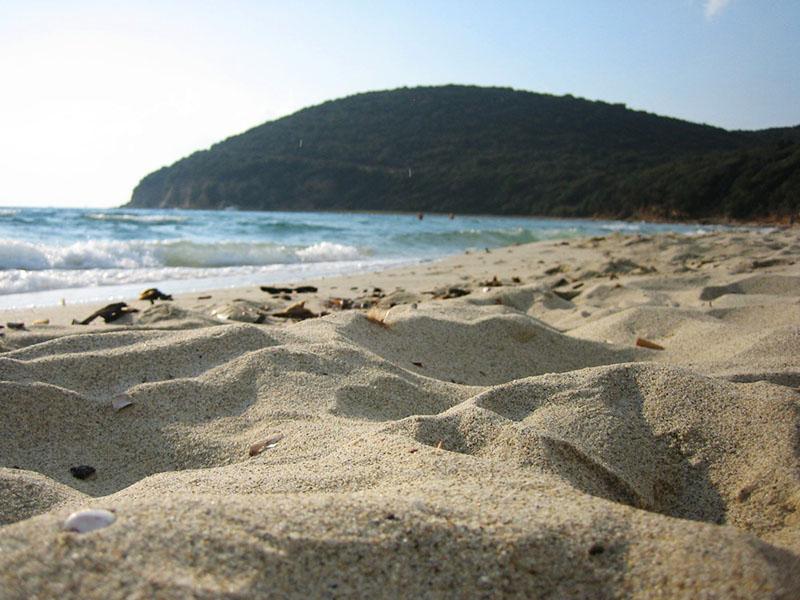 spiagge e mare maremma cala violina agriturismo poggio al vento