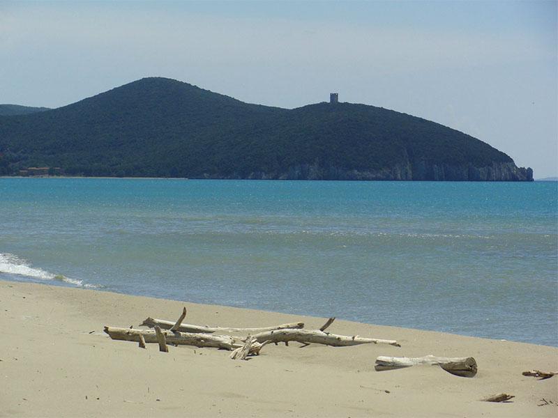 spiagge e mare maremma toscana alberese agriturismo poggio al vento