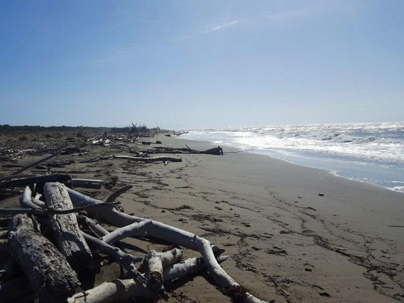 spiagge e mare maremma toscana principina a mare agriturismo poggio al vento